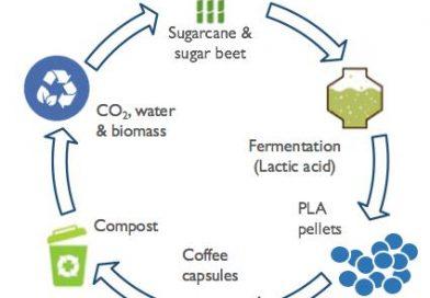 Hoe de Oceano koffiecapsules gebruiken?